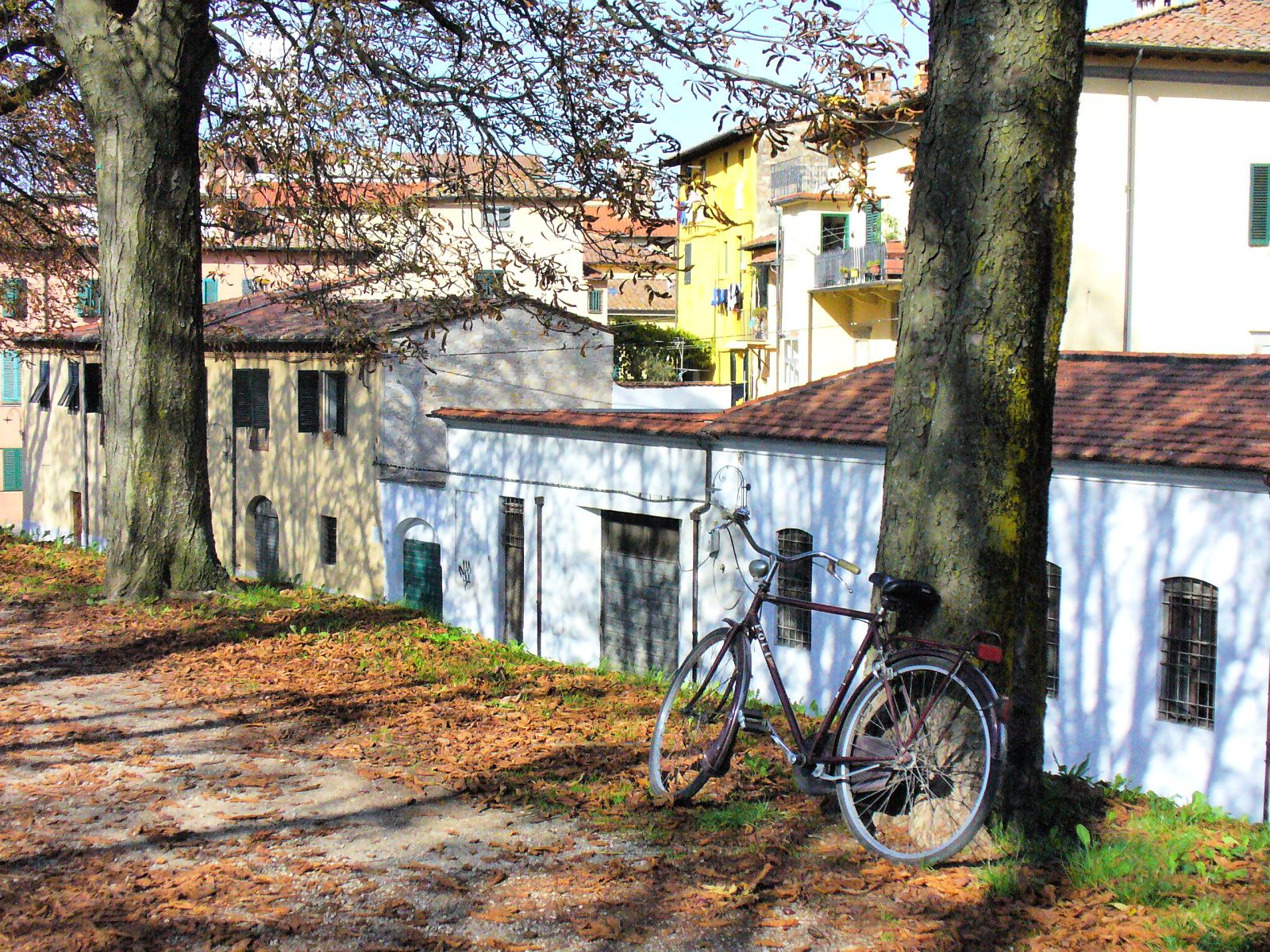Slowtravel-Lucca